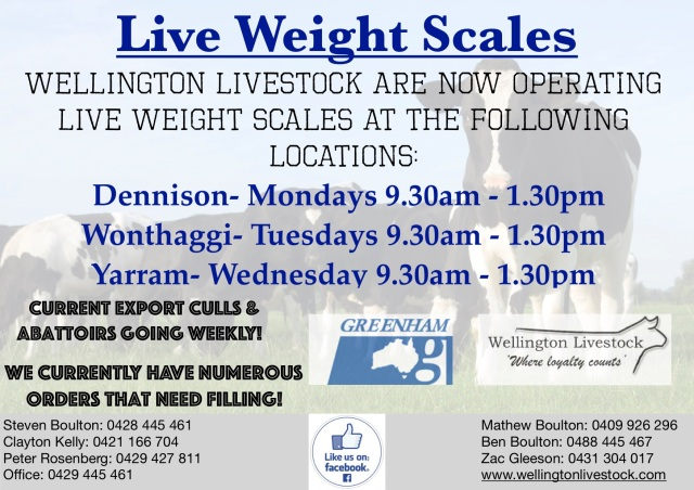live weight scales